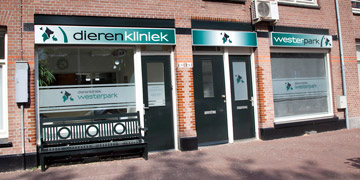 Find our animal care clinic and vets on Spaarndammerstraat in Amsterdam Oud-West